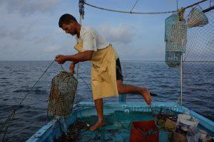 kerkennah-tunisie-drina-poulpe-bernard-grua