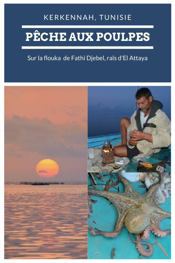 Pêche aux poulpes, drina, Kerkennah