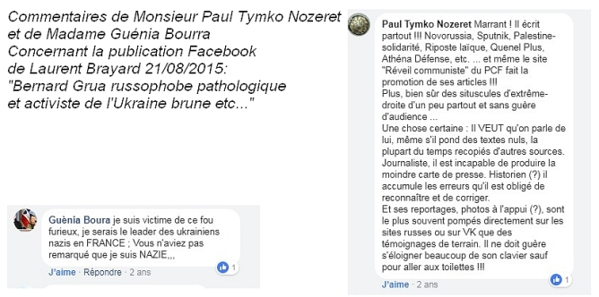 Témoignages contre la diffamation de Laurent Brayard, Doni Press, Novorossia, Donetsk, Laurent Courtois