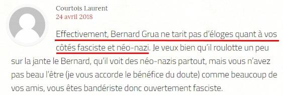 Laurent Courtois, Agoravox, et les néonazis d'Ukraine