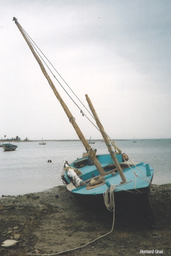 "Le loud ( loude ) ""El Feliho"" ( El Felah) à Kerkennah en 2002 - Chergui, la Marsa des 20"