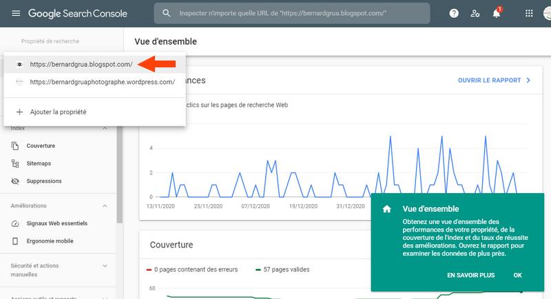 Il est possible de lancer des indexations darticles ou pages du site blogspot