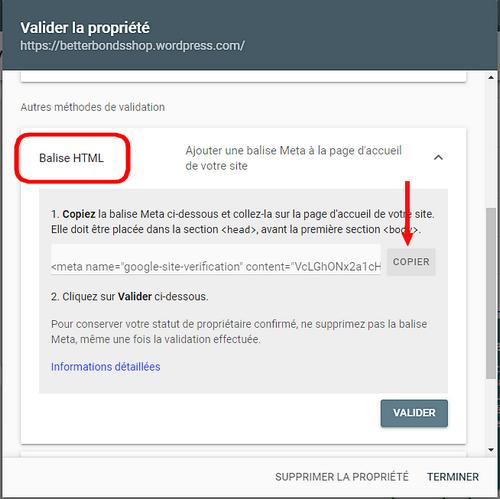 Google Search Console, ouvir la Balise HTML et copier le code.