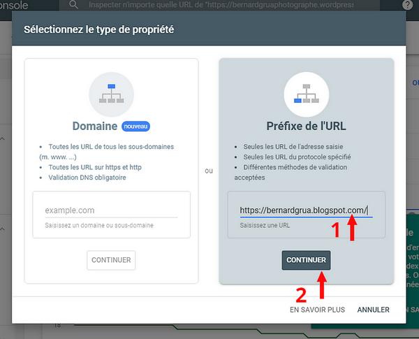 Coller l'URL du site Blogspot dans la Google Search Console