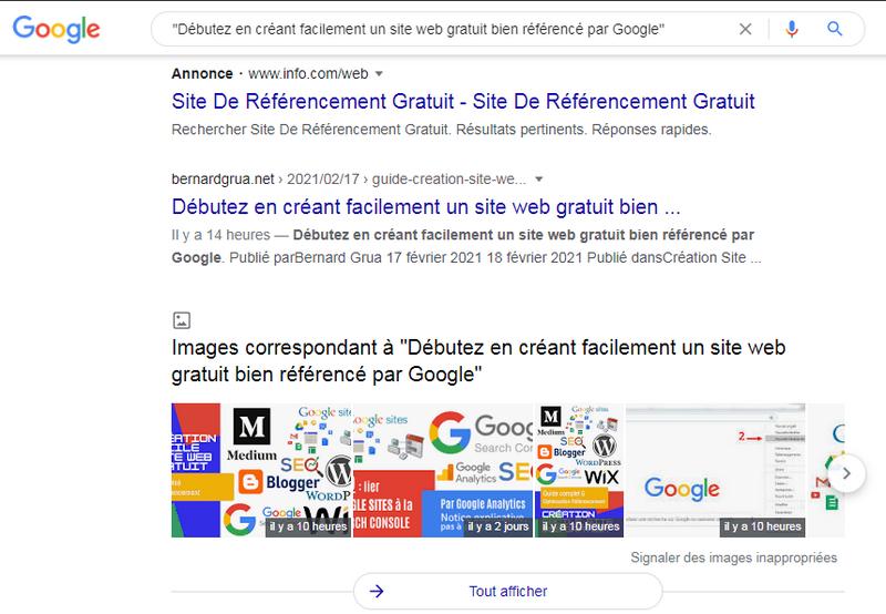 Affichage du résultat de la recherche Google. L'indexation a été réalisée