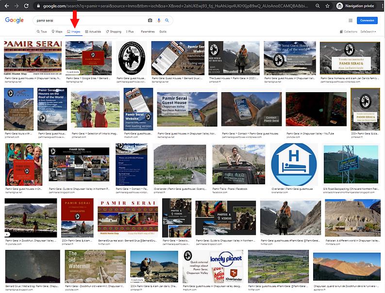 Pamir Serai, saturation du résultat Google de la recherche image.