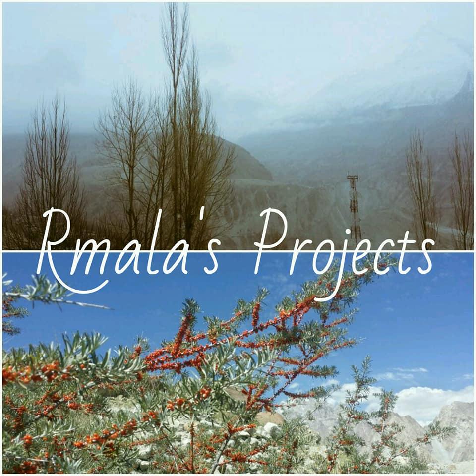 Rmala's Projects cover on Facebook, Ramla's Projects, Ramla Akhtar, Ramla Aalam