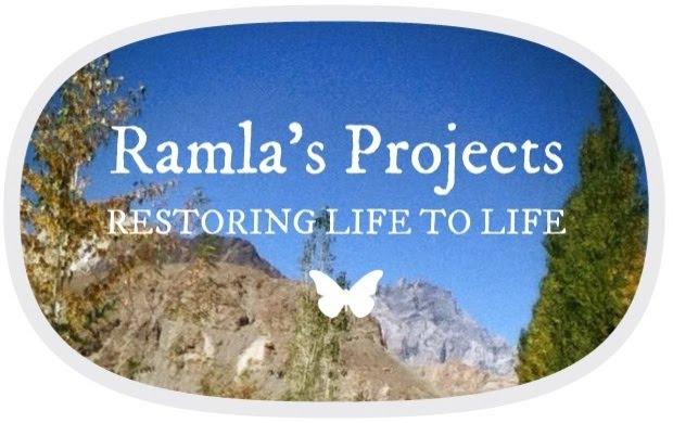 Ramla's Projects logo, website