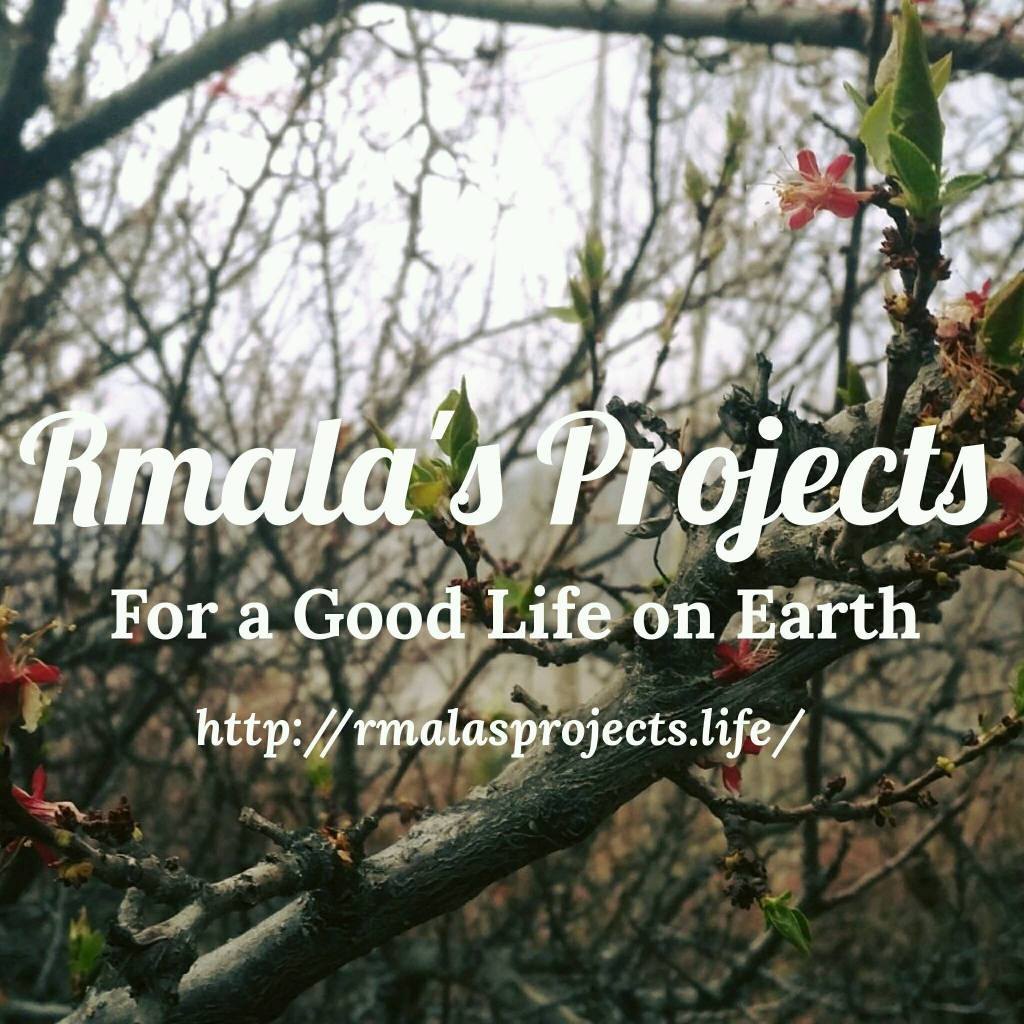 Rmala's Projects profile image on Facebook, Ramla's Projects, Ramla Akhtar, Ramla Aalam